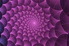 Espiral del web de araña Fotos de archivo