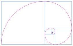 Espiral y secuencia de oro de Fibonacci Imagen de archivo