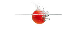 Espirrando tomates Imagens de Stock Royalty Free