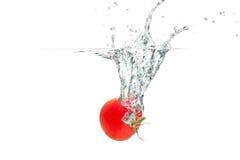 Espirrando tomates Fotos de Stock Royalty Free