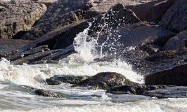 Espirro da água Fotos de Stock Royalty Free