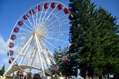 Esplanadepark auf Marine Terrace Street in Fremantle-Hafenstadt in Perth, Australien lizenzfreie stockfotos