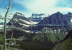 Esplendor de la montaña foto de archivo libre de regalías