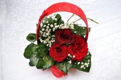 Esplendor de las rosas rojas de su belleza y frescura Imagen de archivo libre de regalías