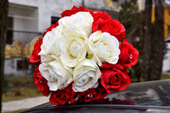Esplendor de las rosas rojas de su belleza y frescura Foto de archivo libre de regalías
