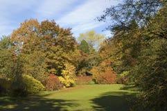 Esplendor del otoño Fotografía de archivo