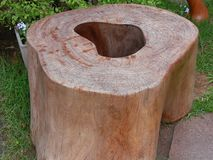 Esplorazione del legno Fotografie Stock