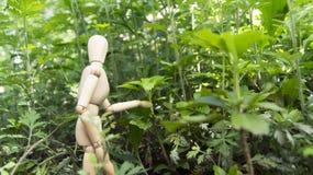 Esplorazione del manichino Immagini Stock