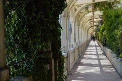 Esplorazione del Principato di Monaco Fotografie Stock