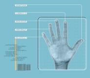 Esplorazione della mano Immagine Stock