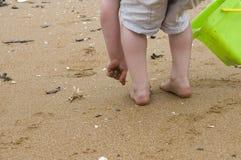 Esplorazione della spiaggia Fotografie Stock