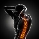 Esplorazione della spina dorsale del corpo maschio Immagine Stock