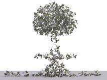 Esplosione atomica del dollaro con il percorso di residuo della potatura meccanica Immagine Stock