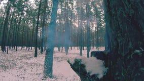 Esplosione di un petardo cinese del cracker del fuoco in un movimento lento archivi video
