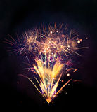Esplosioni dei fuochi d'artificio su fondo nero Fotografie Stock Libere da Diritti