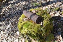 Esplosivo ad alto potenziale del whizzbang dell'artiglieria della seconda guerra mondiale con ceppo in foresta della Bielorussia fotografie stock
