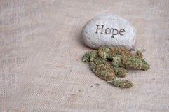 Espoir médical de marijuana Photographie stock libre de droits