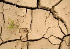 Espoir neuf - réchauffement global Images libres de droits