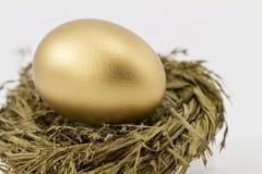Espoirs d'or de retraite Images stock