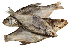 Espolón secado de los pescados en un fondo blanco Foto de archivo libre de regalías