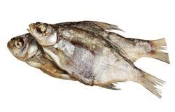 Espolón secado de los pescados en un fondo blanco Fotos de archivo