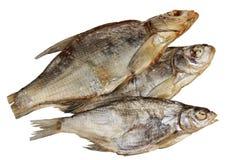 Espolón secado de los pescados en un fondo blanco Imagenes de archivo