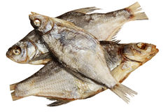 Espolón secado de los pescados en un fondo blanco Imagen de archivo