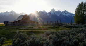 Esponga al sole i talenti che cadono sul granaio abbandonato in prato alpino Fotografie Stock Libere da Diritti