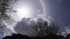 Esponga al sole il bianco di alone alcuni rami di albero e della roccia Fotografia Stock
