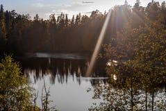 Esponga al sole l'abbagliamento ed i raggi del sole sugli alberi e sul lago Fucilazione nella lampadina Fotografia Stock