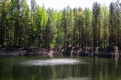Esponga al sole l'abbagliamento sulla superficie di un lago della foresta immagine stock