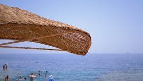 Esponga al sole l'ombrello su una spiaggia nell'Egitto sul Mar Rosso Sunny Resort sulla costa della scogliera dello Sharm el Shei archivi video
