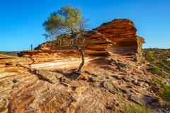 Esponga al sole sopra la traccia del ciclo della finestra delle nature, il parco nazionale di kalbarri, l'Australia occidentale 2 immagine stock libera da diritti