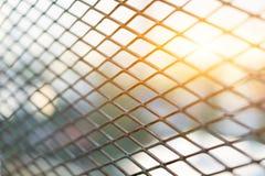 Esponga al sole splendere attraverso i cespugli d'acciaio della priorità alta del diamante della gabbia Immagine Stock
