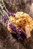 Esponja natural com alfazema fresca e a etiqueta vazia Imagens de Stock Royalty Free