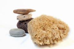 Esponja para bañarse, piedra pómez, piedras del mar del mar. cáscara Imagenes de archivo