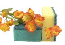 Esponja y flor Imagen de archivo libre de regalías