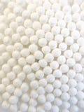 Esponjas de algodón Imagen de archivo