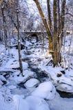 Espoonkartano w zimie Fotografia Royalty Free