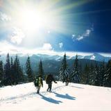 Esporte de inverno Foto de Stock