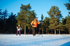 Esporte de inverno imagem de stock