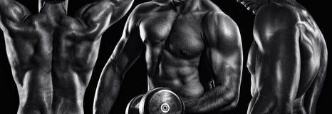 Esporte e aptidão O homem atlético do halterofilista forte que bombeia acima os músculos malha foto de stock