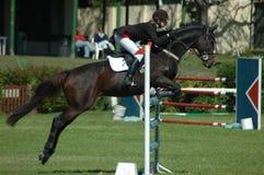 Esporte equestre Imagens de Stock Royalty Free