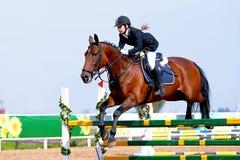 Esporte equestre. Foto de Stock Royalty Free