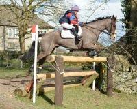 Esporte equestre: o salto do cavalo Fotos de Stock Royalty Free