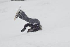 Snowboarding nos cumes Imagem de Stock Royalty Free