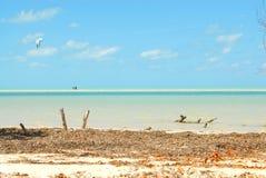Esportes de água das caraíbas da ilha de Holbox foto de stock