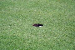 Esportes do golfe Foto de Stock Royalty Free