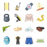 Esportes e dieta ativa e o outro ícone da Web no estilo dos desenhos animados Emagrecimento a garantia de ícones separados de um  Fotos de Stock
