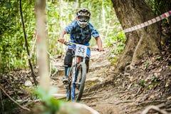Esportes em declive da bicicleta Imagens de Stock